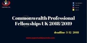 Commonwealth Professional Fellowships UK 2018 2019 300x150 - Opportunities Circle Scholarships, Fellowships, Internships, Jobs